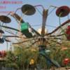 郑州双人飞天厂家,新型双人飞天游乐设备, 供应双人飞天