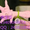 土鸡佩戴的二维码追溯标识
